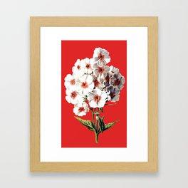 Rosies Framed Art Print