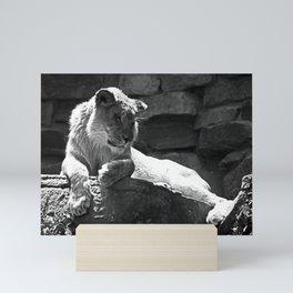 # 240 Mini Art Print