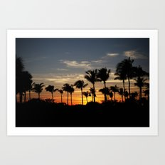 Sunseticus maximus  Art Print