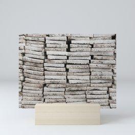 Salt blocks for trade| Abstract photography Mini Art Print