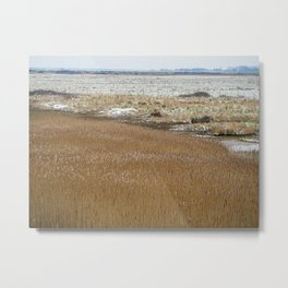 The Marshes. Metal Print