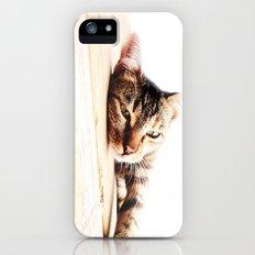 Cats Love iPhone (5, 5s) Slim Case