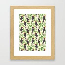 The Tropical Hornbill Framed Art Print
