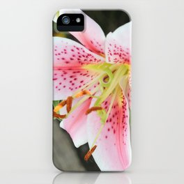 Remembering Summer iPhone Case
