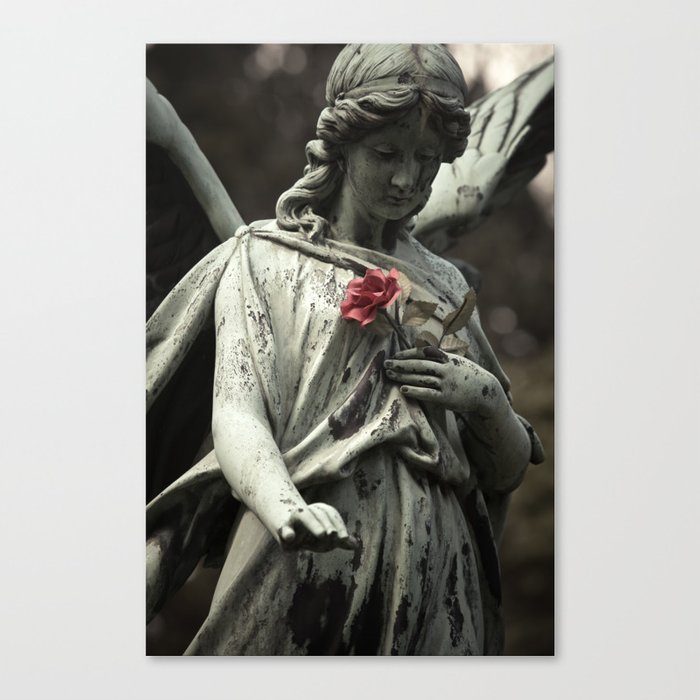 Angel with a rose Canvas Print