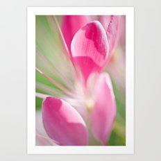 'Springtime' Art Print