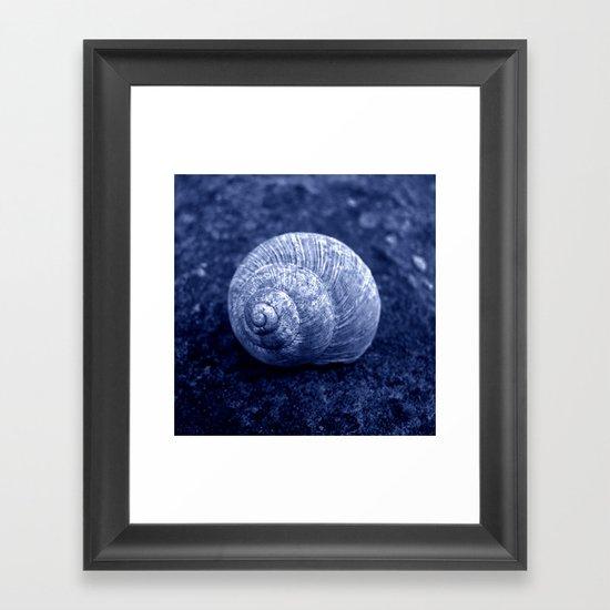 blue snail shell Framed Art Print