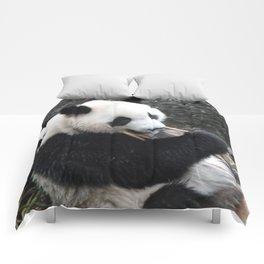 Munching Pandas Comforters
