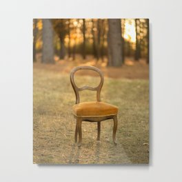 A seat in the woods Metal Print
