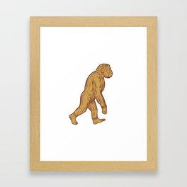 Homo Habilis Walking Side Drawing Framed Art Print