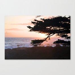 coast sun Canvas Print