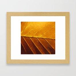 Sunburnt Framed Art Print