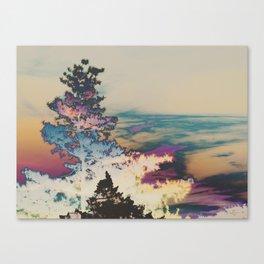 297 | west texas Canvas Print