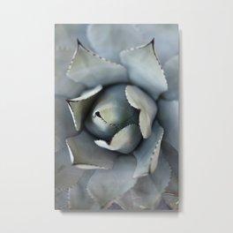 Agave - Botanical Love Metal Print