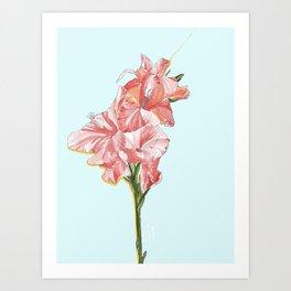 Floral Orchestra #01 [Gladiolus] Art Print