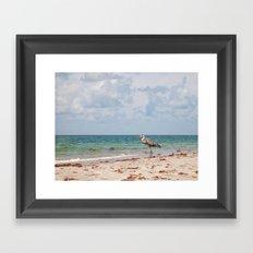 Heron Sand and Surf Framed Art Print