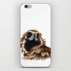 Black Vulture iPhone & iPod Skin