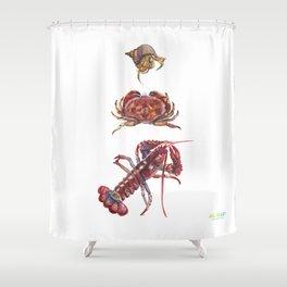 Crustaceans Shower Curtain