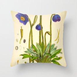 Purple Flowers Vintage Botanical Illustration Scientific Species Drawing Throw Pillow