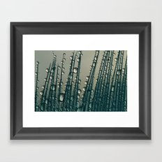 Feather Drops with Midnight Blue Framed Art Print
