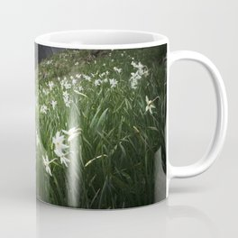 Mountain Golica and Narcissus flowers Coffee Mug