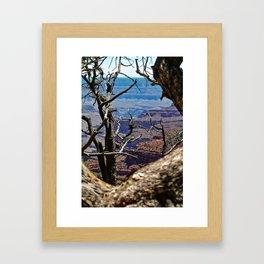 Death's Tree Framed Art Print