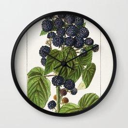 Black Raspberries (Rubus Occidentalis) (1908) by Ellen Isham Schutt Wall Clock