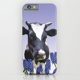 Grape hyacinths with black and white cow #society6 iPhone Case