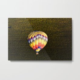 Balloon and Napa Vineyards Metal Print