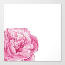 Pink Peony on White Canvas Print
