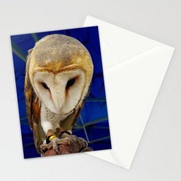 Mr. Owl the Barn Owl Stationery Cards