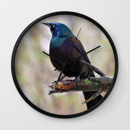Yonder  (Common Grackle) Wall Clock