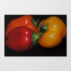 nom Canvas Print