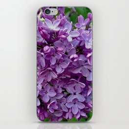 Lilac Blooms iPhone Skin