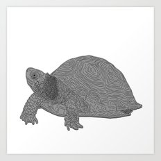 Turtle Illustration B/W Art Print