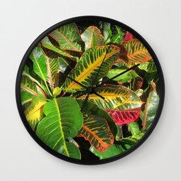 Beautiful Croton Wall Clock