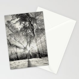 Autumn meets Winter -III.- Stationery Cards
