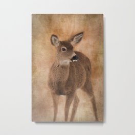 Winter's Fawn Metal Print