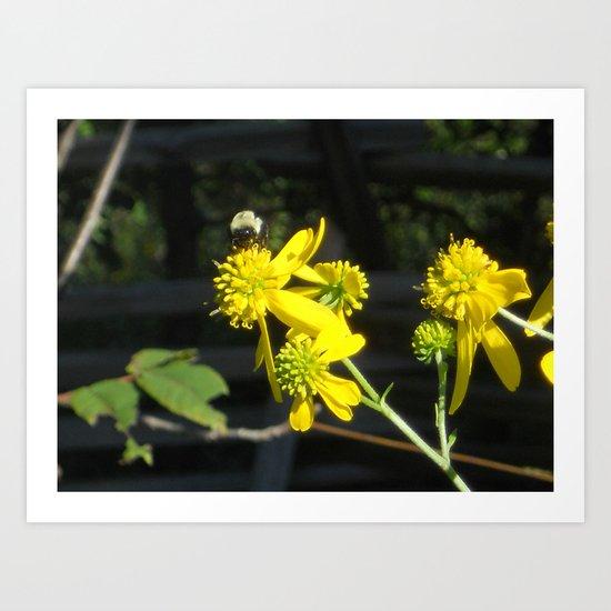Pollen for my Queen Art Print