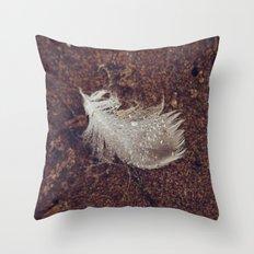 Beach Feathers 2 Throw Pillow