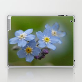 Close-up Forget Me Not - Blue Myosotis Laptop & iPad Skin