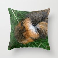 guinea pig Throw Pillows featuring American Crested Guinea Pig by Emily Hunter-Higgins
