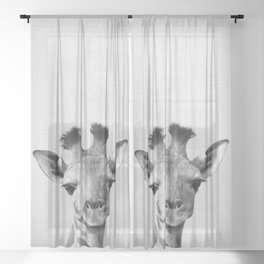 Baby Giraffe - Black & White Sheer Curtain