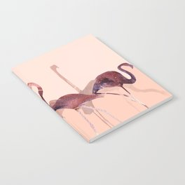 Summer Flamingos Notebook