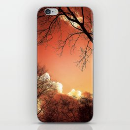 Sunset Through The Trees iPhone Skin