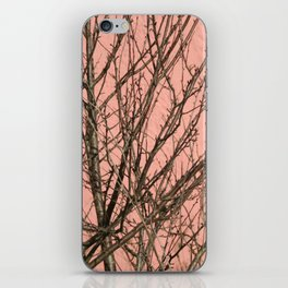 Bare tree against a pink wall iPhone Skin