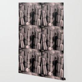 Blush Cacti Dream #1 #cactus #decor #art #society6 Wallpaper
