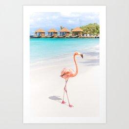 Flamingo Beach, Aruba Art Print