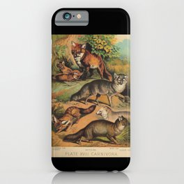 Vintage Foxes iPhone Case