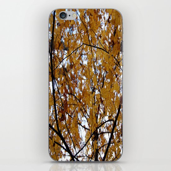 A Change of Seasons  iPhone & iPod Skin